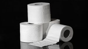 paper wc